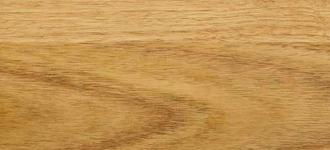 Tallowwood-timber-species