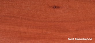 More about Red Bloodwood